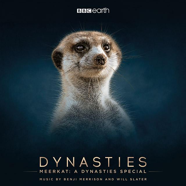 Meerkat A Dynasties Special